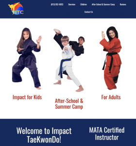 1 page martial arts website 2