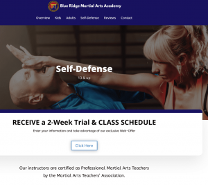 1 page martial arts website